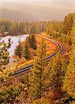 Voies ferrées et les arbres le Parc National Banff, Alberta, Canada