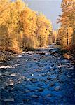 Kootenay-est en automne Colombie-Britannique, Canada
