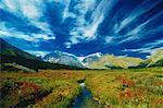Columbia des glaciers Jasper National Park, Alberta Canada