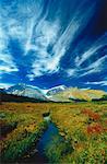Columbia Icefields Jasper National Park, Alberta Canada