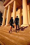 Back View of Businesswomen Walking Up Steps