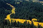 San Juan Mountains and Aspens Mountains, Colorado, USA