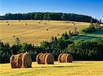 Bottes de foin dans les champs près de Clinton, Prince Edward Island, Canada