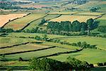 Danby Dale, North York Moors Yorkshire, England