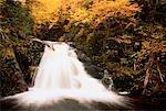 Waterfall in Autumn Cape Breton Highlands National Park, Nova Scotia, Canada