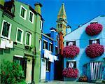 Houses with Flowers Island of Burano Venetian Lagoon, Italy