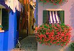 Windows and Flowers Island of Burano Venetian Lagoon, Italy