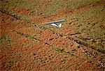 Airplane Flying Over Sheep Fairfield, Queensland, Australia