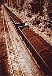 Train et la voie ferrée en hiver