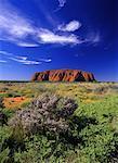 Ayers Rock, Australie Uluru