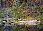 Réflexions du feuillage sur l'eau à l'automne, près de Parry Sound, Ontario, Canada