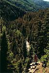 Man with Mountain Bike, Standing On Cliff, Durango, CO, USA