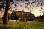 Farm at Sunset Illinois, USA