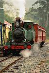 ABT Wilderness Railway Queenstown, Tasmania, Australie