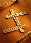 Lettre carreaux sécurité la croissance et le succès de l'orthographe