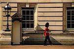 Garde royale à Buckingham Palace, Londres, Angleterre
