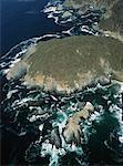 Luftaufnahme der Küste und krachen der Wellen, Pazifischen Ozean in der Nähe von Mazatlan, Mexiko