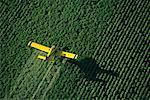 Vue aérienne des cultures saupoudrage Portage la Prairie, Manitoba, Canada