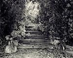 Close-Up of Steps in Garden Salisbury, England