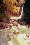 Lower Yosemite Falls Yosemite National Park California, USA