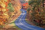 Voiture sur la route en automne