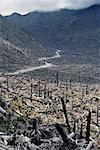 Mount Saint Helen's National Monument