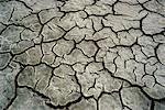 Dried Out Prairie Slough