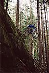 VTT dans la forêt