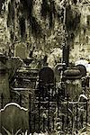 Old Cemetery Charleston, South Carolina
