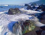 Pacific Ocean, Redwood National Park, California, USA