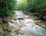 Pemigewasset River, Franconia Notch State Park, New Hampshire, USA