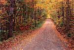 Country Road near Millville, New Brunswick, Canada