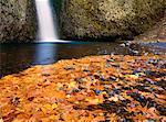 Automne, Base de Multnomah Falls, Columbia River Gorge, Oregon, Etats-Unis