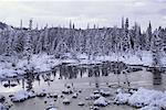 Christmas Creek, Yukon, Canada