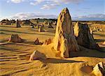 Le Pinnacles, Parc National de Nambung, Australie occidentale Australie