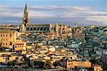 Cityscape Toledo, Spain