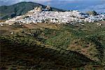 Petite ville au bord de montagne Olvera, Espagne Andalousie