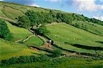 Yorkshire Dales Yorkshire, Angleterre