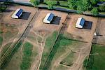Horse Farm, New York State, États-Unis