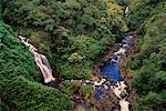 Chutes d'eau et de la côte de Hamakua Rainforest, Hawaii, USA