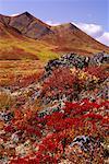 Tombstone Mountain Yukon-Territorium, Kanada