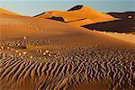 Desert Sand Dunes Namibia, Africa