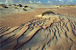 Desert Namaqualand South Africa