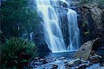 Mackenzie Falls Grampian National Park Victoria, Australia
