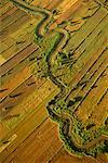 Farmland and River from Balloon Si Satchanalai, Thailand