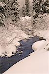 Paysage couvert de neige