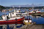 Fishing Boats in Harbour Castro, Chiloe Island Chile, South America