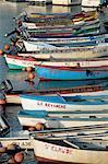 Retrouvailles, petits bateaux de pêche