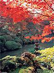 Japan, Kyoto, Parc Tofuku Ji at fall
