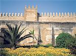 Maroc, Rabat, jardin de la kasbah des Oudayas